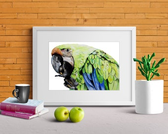 Digital Art Print Bird ARA Green Blue