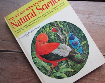 Natural Science The Golden Book Encyclopedia Volume 6 Firelies to Geckos