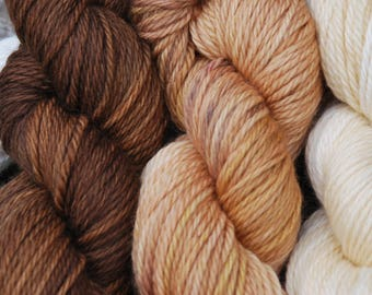 Hand Dyed Aran 4 Skein Gradient - Sheep of the Earth