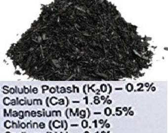 EXPLOSIVE PLANT GROWTH 1 ounce Activated Biochar