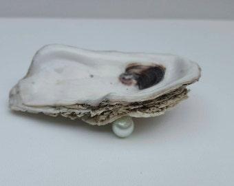 Silver Rimmed Oyster Ring or Trinket Dish item SP01