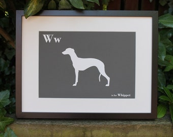 Whippet Print - Dog Art -  Alphabet Breed Silhouette Whippet