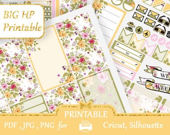 BIG Happy Planner Stickers PRINTABLE kits Stickers for Big HP Vertical Big Planner Functional stickers Silhouette Cut files Cricut Discount