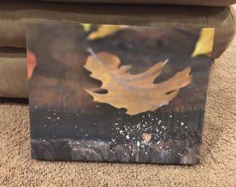 canvas printed leaf photo