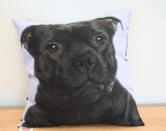 Staffordshire Bulll Terrier Staffy  Dog Cushion Digitally Printed version 2