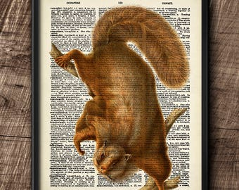 Squirrel · Instant Download · Dictionary · Vintage · Wall · Printable · Digital File #99