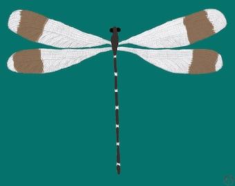 Dragonfly, art print, dragonfly art, dragonfly print,