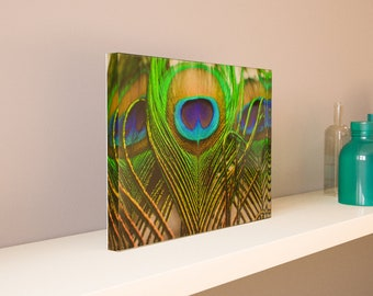 Large Acrylic Photo Blocks (9x6, 12x8, 15x10, 18x12) - Mother Nature Abstract Series 3 - Made 100% In USA - Free Shipping