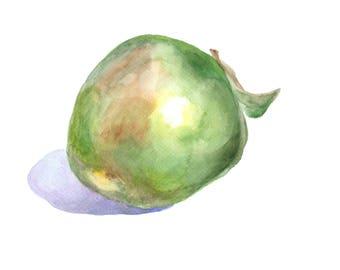green Apple Watercolor, Apple watercolor print, Apple Fruit Print, green Apple Print, green fruits watercolor, food watercolor print