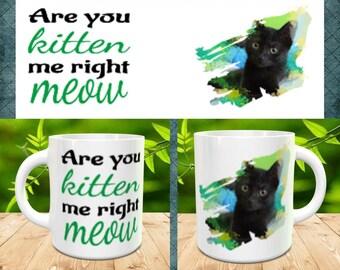 Are You Kitten me coffee mug, Cat lover, gift, not vinyl, dishwasher safe coffee mug