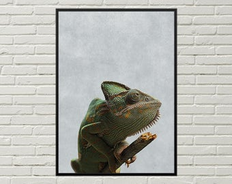 CHAMELEON poster, lizard photo, exotic wall decor, rainforest wall art, chameleon print, printable art, chameleon art wall decoration