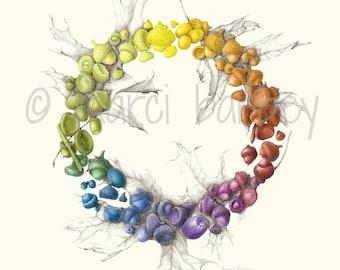 Botanical Illustration - Acorn Wreath - 16x20 inch Matted Art Print with Acorns & Oak Leaves