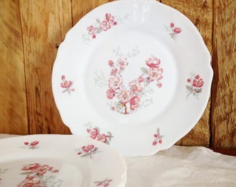 Arcopal plates with pink flowers
