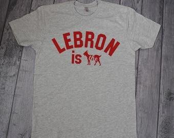 Lebron James Shirt, Lebron James, Lebron Shirt, Cavs Shirt, Cleveland Shirt, King James, Cavaliers Shirt, Cleveland Cavaliers