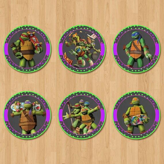 Teenage Mutant Ninja Turtles Cupcake Toppers - Chalkboard Purple Pink - Ninja Turtle Birthday Party - Girl Ninja Turtle Party Favors - TMNT