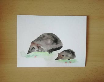 Hedgehog - Mama and baby - watercolor - image - forest