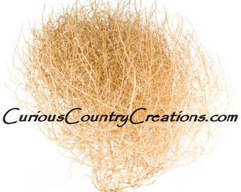 Gigantic Tumbleweed | Tumbleweed | Tumbleweed Light