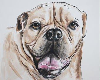 Have a portrait done of your pet 40cm X 50cm - original painting on gallery canvas in my unique style.