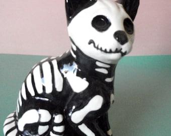 X-Ray Skeleton Cat