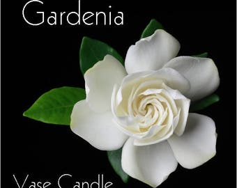 Gardenia Vase Candle Refill - Scented, Soy, Paraffin Wax, Paper Core, Self-trimming Wick, Refillable Vase, 50 Hour Burn Time Each