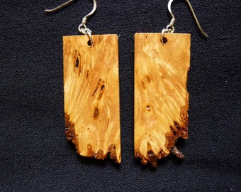 Douglas Fir burl earrings #3