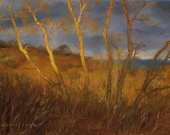 Last Light, Dartmoor, landscape oil painting, direct from artist