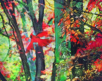 Autumn flight, 16x20 inches, works on paper, mixed media photography, Original art, #cardinals #Red wall decor #Fall wall art #Colorful art