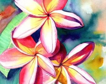 Plumeria Watercolors, Hawaiian Flowers, Tropical Flowers, Frangipani Art, Kauai Fine Art, Original Plumeria Paintings,  Aloha Flowers Hawaii