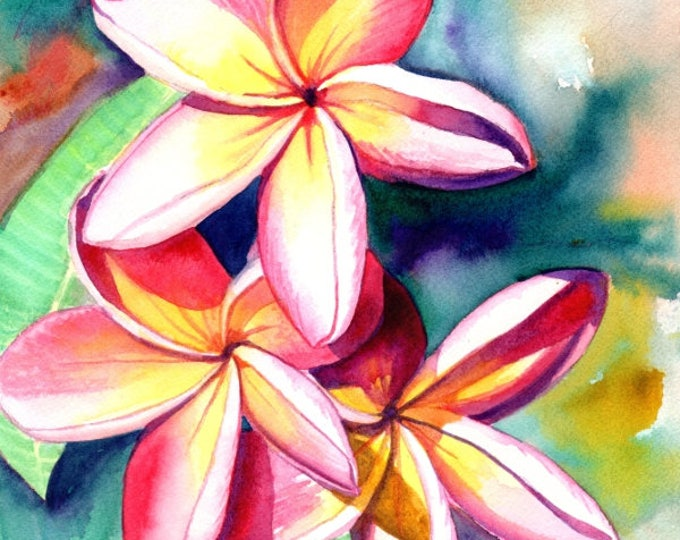 Plumeria Watercolors, Hawaiian Flowers, Tropical Flowers, Frangipani Art, Kauai Fine Art, Original Plumeria Paintings,  Aloha Flowers Hawaii
