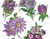 Self Adhesive Purple Flowers Stickers 1 Sheet Colorful Scrapbooking Stickers  Number C62