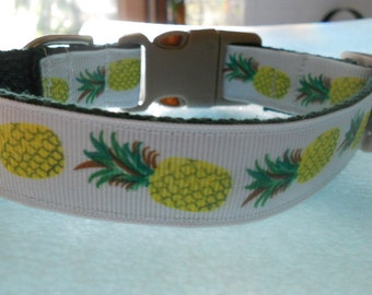 Pineapple Dog or Puppy Collar - Hawaii Theme Ribbon, Novelty, Colorful