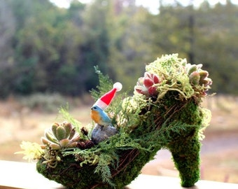 20% off Moss  & Succulents Shoe planter centerpiece-Fairy or blue bird  your choice-NO water needed-Preserved Moss-Shag moss