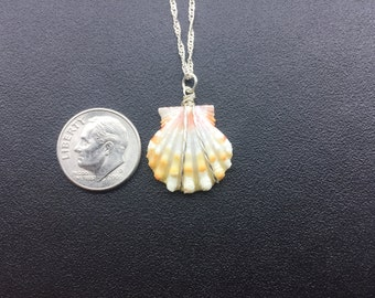 0222 Sunrise Shells Hawaii Necklace With 18 Sterling Silver Chain