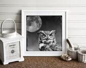 owl moon photograph, full moon, spirit animal bird, great horned owl photo, spiritual art, home decor, conceptual photography print, magical