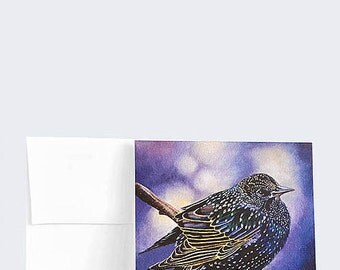 "GREETING CARDS, Ruffled Feathers, European Starling, Bird, oil, 5.25"" x 5.25"", pack of 6"