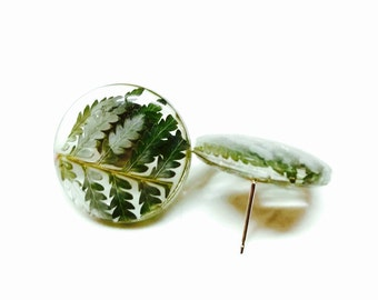 Eco Resin Eco Resin Jewelry Botanical Earrings Gift Stud Earrings with Sterling Silver Post Earrings with Fern