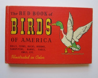 vintage bird book - The RED BOOK of BIRDS of America - circa 1941