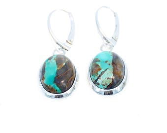 CARICO LAKE TURQUOISE Earrings Ribbon Blue Ovals Sterling NewWorldGems