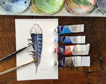 Blue Jay feather study - Original watercolour