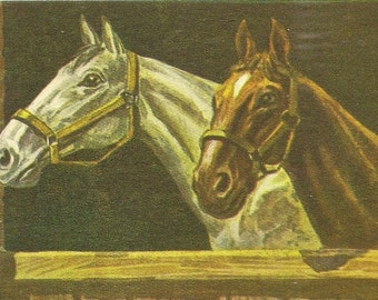 Artist Signed Vintage Art Postcard Two Horses At The Gate – A Gray and A Bay Unused Suitable For Framing