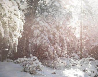 "Winter Wonderland, Woodland Wall Art, Snow, Winter, Snow Falling, Abstract Snow Print, Winter Woodland, Cabin Wall Art, ""Winter Diamonds"""