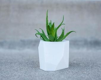 Lily - Air Plant/ Mini Succulent Planter