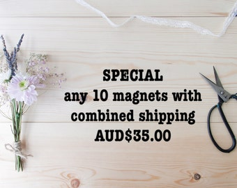 MAGNET BUNDLE - Select any 10 magnets for AUD35.00 with combined shipping