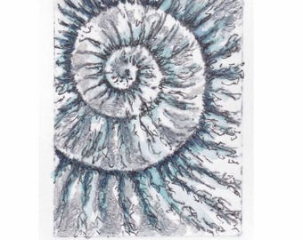 Original ammonite fossil zinc etching no.98 with mixed media jurassic Dorset coast fossil spiral fossil ammonites golden section
