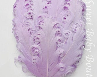 Feather Pad Lavender