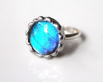 Blue Butterfly Wing Sterling Silver Ring, Blue Morpho Menalus Butterfly, Nature Jewelry