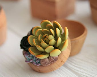 TO ORDER ONLY Green Blue Succulent Ring Box Bearer Case Wholesale Wooden Engagement Ring Holder Proposal Ring Case Wedding Bridal