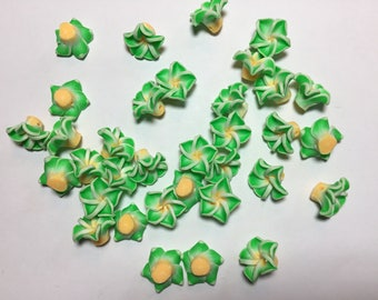 20 Fimo Polymer Clay Plumeria Light Green Yellow  Flower  Fimo Beads 15mm