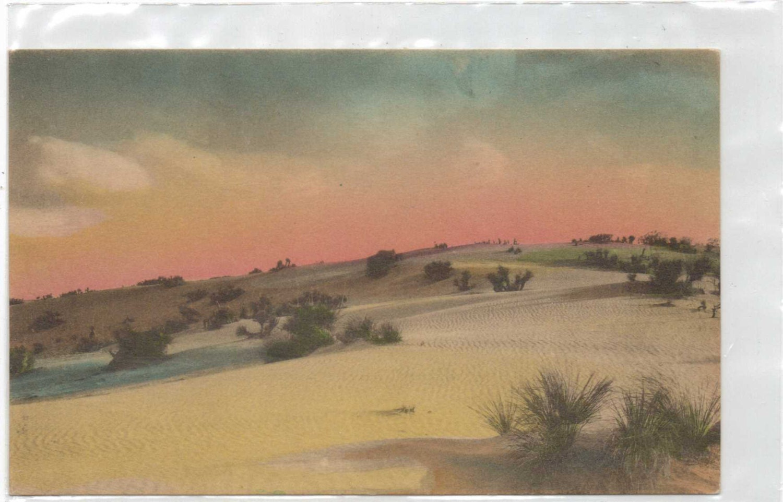 hand colored vintage postcard desert scene made