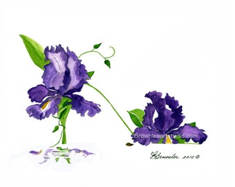 Purple Iris Flower Shoe  - Enhanced with Watercolor Paint and signed- Wall Art - Free Shipping